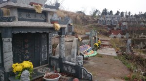 Chinese cemetery. Every year on Tomb Sweeping Day the family comes and cleans the tombs, burns incense and fireworks and prayers (if they're Buddhist) and leaves offerings.